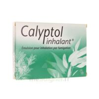 CALYPTOL INHALANT, émulsion pour inhalation par fumigation à Marmande