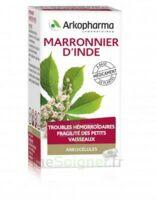 ARKOGELULES MARRONNIER D'INDE, gélule à Marmande