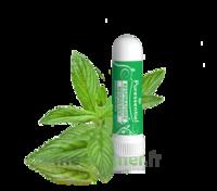 PURESSENTIEL RESPIRATOIRE Inhalation nasal 19 huiles essentielles à Marmande