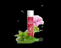 PURESSENTIEL ANTI-PIQUE Roller 11 huiles essentielles à Marmande